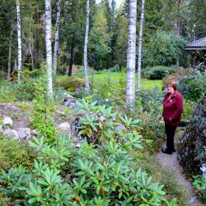 Marita Riskus och Lars-Ole Barkars trädgård i Sundom i Vasa