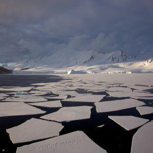 Havsis på Antarktis.