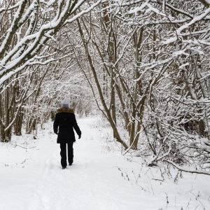 Person som promenerar i skogen vintertid.