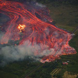 Lavaflöde från vulkanen Kilauea på Hawaii.