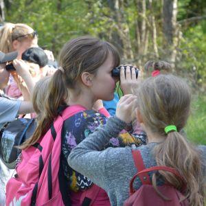 Fågelskådning i Katrinedals naturskyddsområde i Åbo