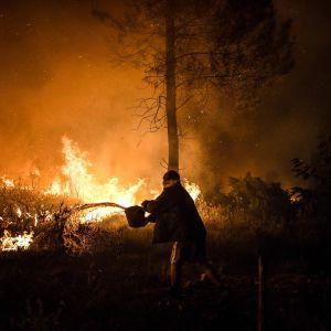 En bybo försöker släcka elden som närmar sig hans hus i Amendoa i Macau, centrala Portugal.