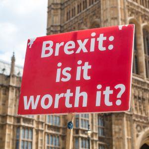 Frågan om brexit