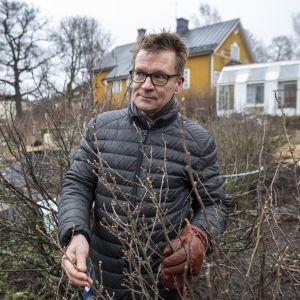 Toimitusjohtaja Timo Taulavuori, Puutarhaliitto