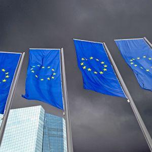 Europeiska centralbankens huvudkontor i Frankfurt. I förgrunden fyra EU-flaggor. I bakgrunden är himlen mörk och olycksbådande.