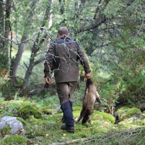 metsästäjä kantaa tapettua supikoiraa