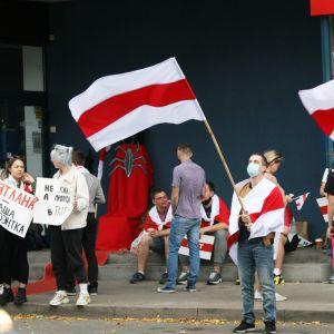 Mielenosoittajia lippuineen ja kyltteineen