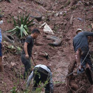 Miehiä pelastustöissä Hondurasissa Etla-myrskyn jäljiltä.