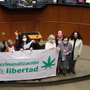 """""""Nej till kriminalisering, ja till frihet"""".Senatorer firar lagen som ska tillåta marihuana. 19.11.2020"""