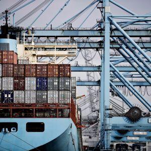 Ett fartyg ägt av danska bolaget Moller-Maersk i hamnen i Rotterdam.