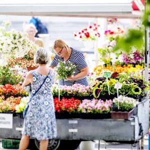 blomsterhandel på salutorget i åbo
