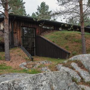 Träbyggnad som är delvis inbyggd i en slänt så att marken fortsätter över taket.