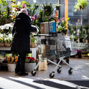 Henkilö katselee kukkakaupan valikoimaa.