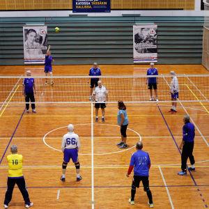 veternavolleybolllaget Sikariporras på match. Vid bild över hela planen.