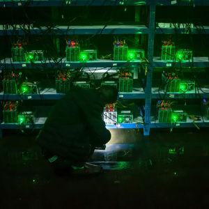 Många gröna datorer som lyser, en man är i huk framför dem.