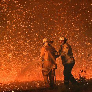 Två brandmän i Nowra i New South Wales den 31 december 2019.