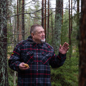 Jari Kropsun kädessä on metsässä kasvatettuja perunoita