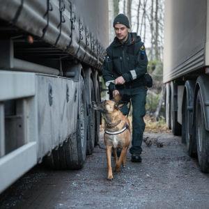 Kärppä tillsammans med sin hundförare Markus Nyholm.
