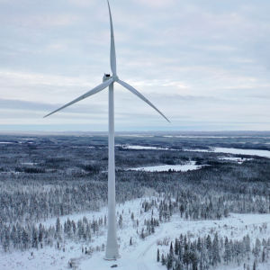 Tuulivoimala metsäisen luonnon keskellä.