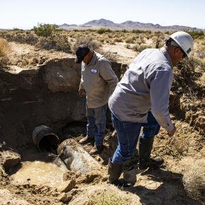 Två män i Kalifornien inspekterar skadorna av en vattenledning som gått sönder på grund av jordbävning.