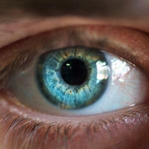 Närbild på ett öga.