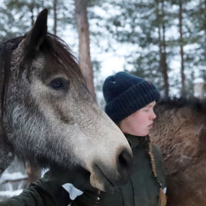 Bertta Laaksonen american bashkir curly -hevostensa kanssa.