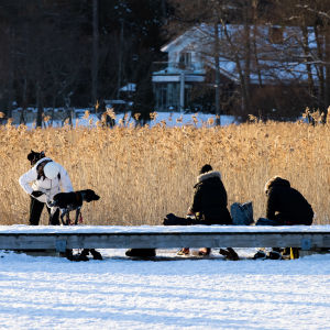 Ulkoilijat laittavat luistimia jalkaansa uimarannan laiturilla.