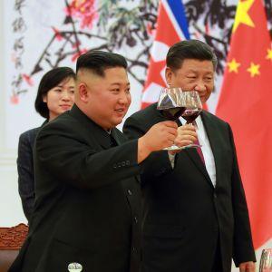 Kim Jong-Un och Xi Jinping träffades tre gånger i Kina i fjol. Dessa möten var de första sedan Kim efterträdde sin avlidne far Kim Jong-Il år 2011