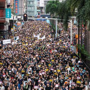 Demonstranterna gräver att Hongkong regeringschef Carrie Lam avgår.
