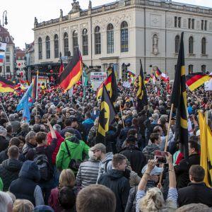 Valtava ihmisjoukko heiluttaa Saksan lippuja ja muita lippuja.