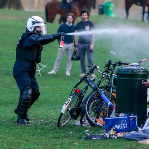 Polisen använder tårgas mot besökare på fejkfestival i Bryssel.