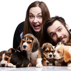 Leende man och kvinna omgivna av hundvalpar