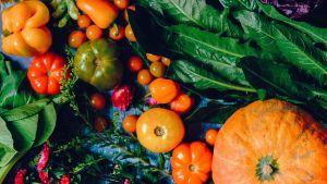 Olika färggranna grönsaker placerade som ett stilleben.