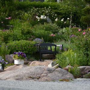 Trädgård med mycket blommor och en bänk.