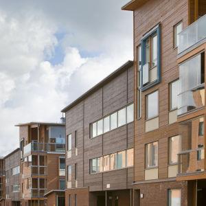 Trähusstadsdel i Vik och här kan vi se flera byggnader i olika färg och träslag.
