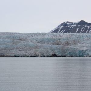 Nordenskiöldglaciären på Svalbard