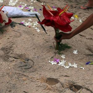 En släkting lägger blommor på ett tsunamioffers grav i Peraliya, Sri Lanka