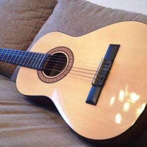 Fannys gitarr