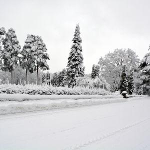 Begravningsplatsen i Kapellby i Lappträsk.