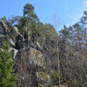 Berg vid Vaarniemi naturskyddsområde