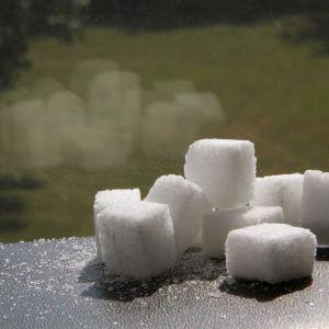 Sockerbotar på ett fönsterbräde.
