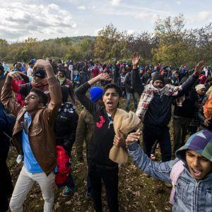 Asylsökande på den grekiska sidan om gränsen protesterar mot att de inte släpps in i Makedonien 3.12.2015