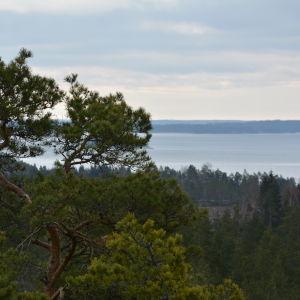 Senatsberget i Dalsbruk.