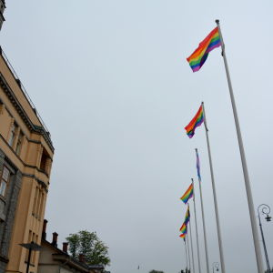 Regnbågsflaggor vid åstranden i Åbo under Åbo pride