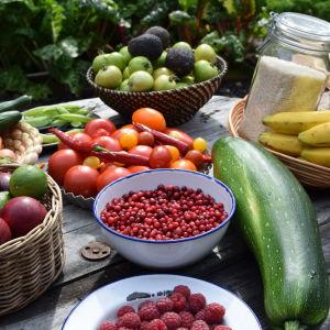 Grönsaker och frukter på ett trädgårdsbord.