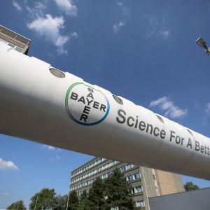 Företaget Bayer AG:s logga vid deras huvudkvarter i Leverkusen.