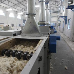 De insamlade bomullsfibrerna öppnas upp och läggs på ett band. Cylindrar tuggar sig igenom materialet.