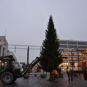 Julgranen på Vasa torg