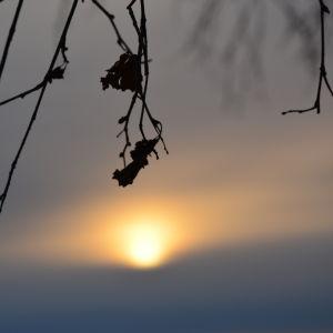 Vintersol i skymningen.