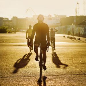 Miehet ajavat polkupyörillä